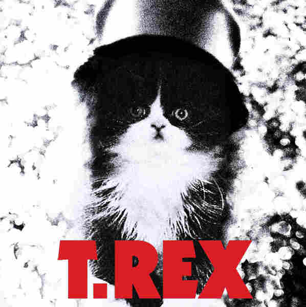Kitten Covers - T. Rex