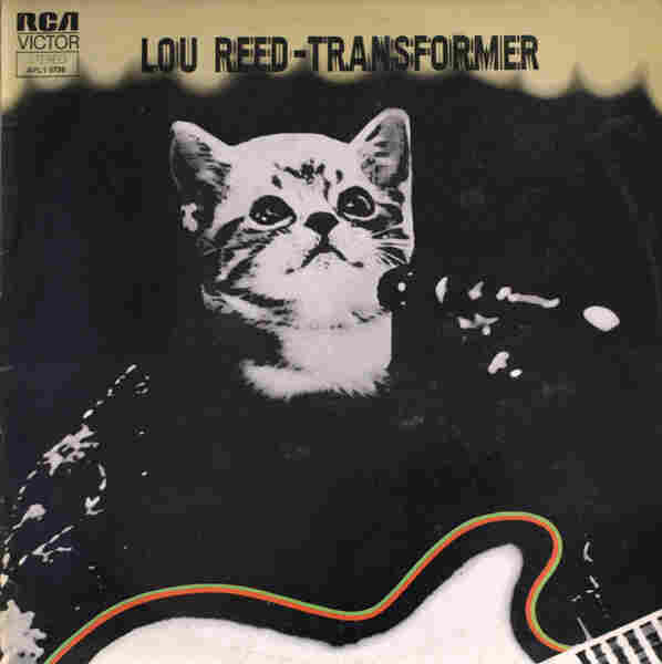Kitten Covers - Lou Reed