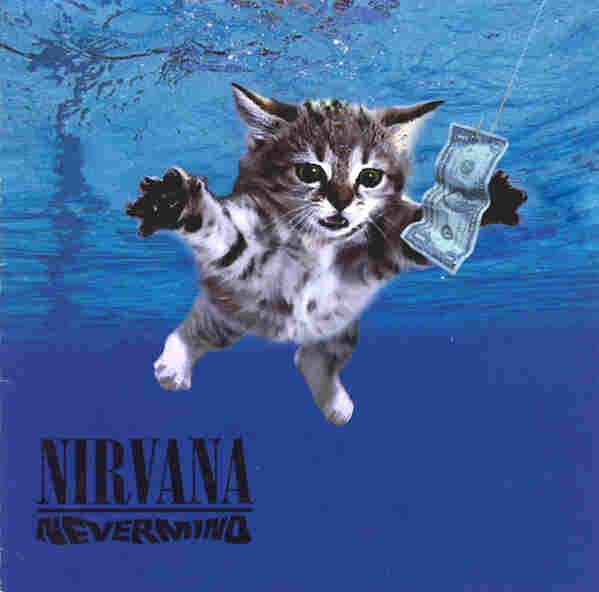 Kitten Covers - Nirvana
