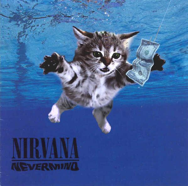 Kitten Covers - Nirvana