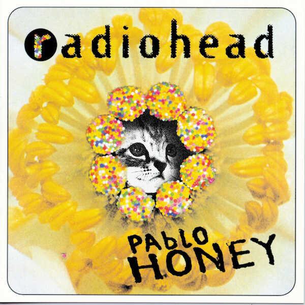 Kitten Covers - Radiohead