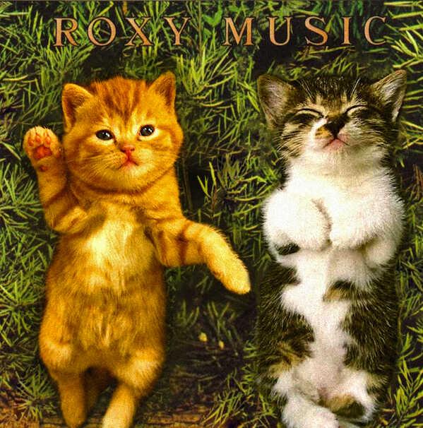 Kitten Covers - Roxy Music