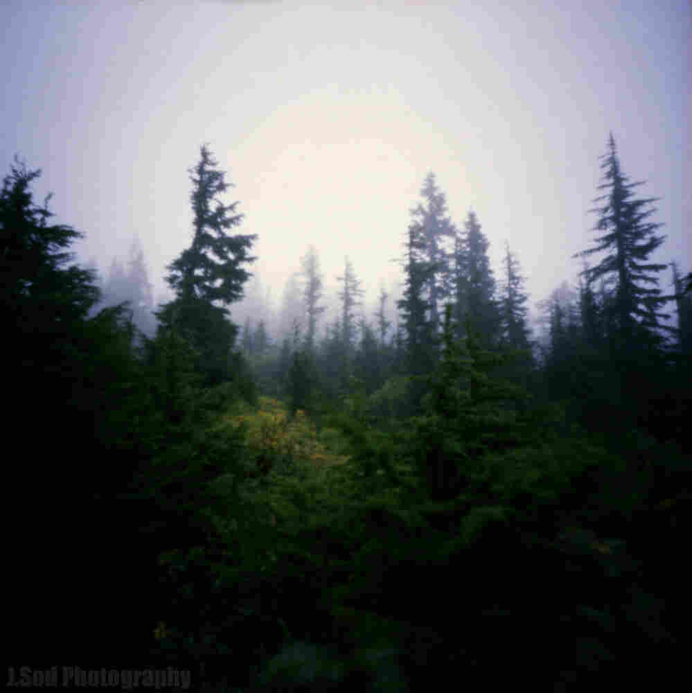 Mount Baker National Forest, near Seattle, Wash., taken with a wooden pinhole camera.