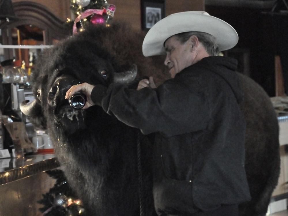 Jim Sautner and his pet buffalo, Bailey Jr.