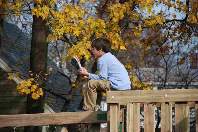 Alexander Tagliani, 9, reads from his perch in Beverly, MA.