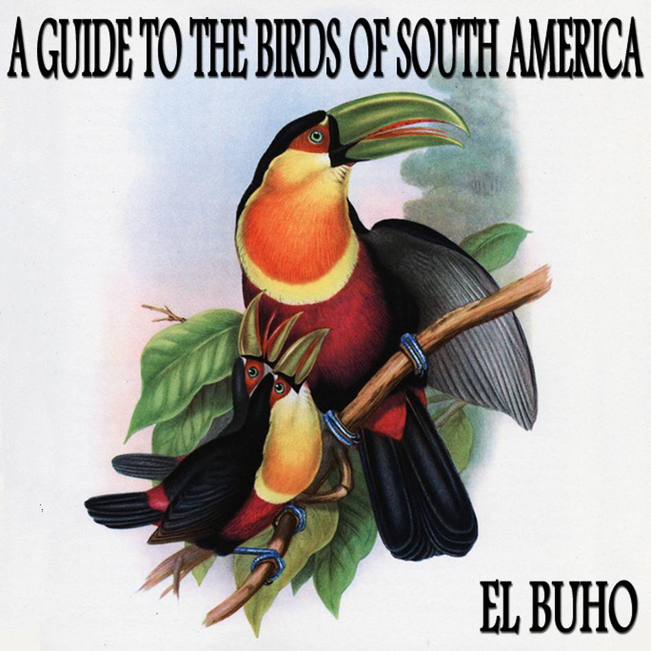 El Buho (Courtesy of the artist.)