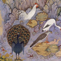 Safavid painter Habiballah shows the birds of the world gathered around the hoopoe bird in his 16th century illustration of 12th century poet Farid al-Din Attar's The Conference Of The Birds.