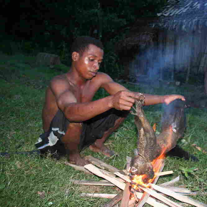 Bush Meat: When Conservation And Child Nutrition Collide