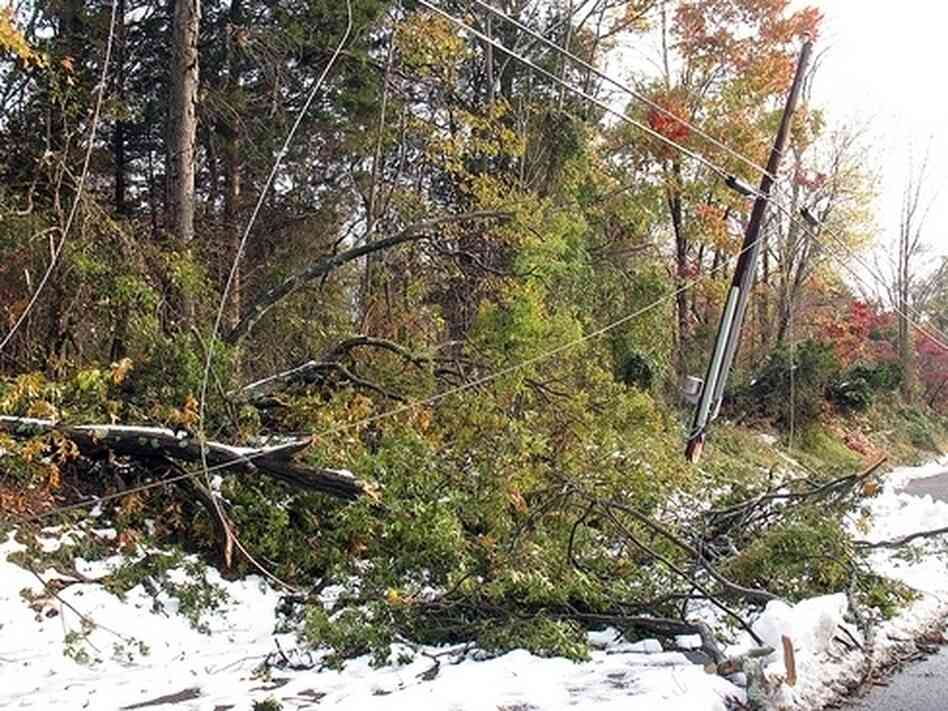 Downed trees and power lines in Montgomery Township, New Jersey.