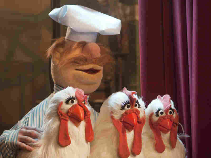 Bork Bork Bork: The Swedish Chef and his remarkably cooperative chickens wait mise en place for the telethon.