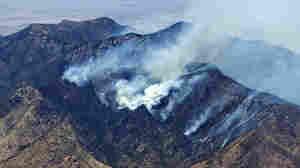 The Monument fire burns Saturday, June 18, 2011 in Sierra Vista, Ariz.