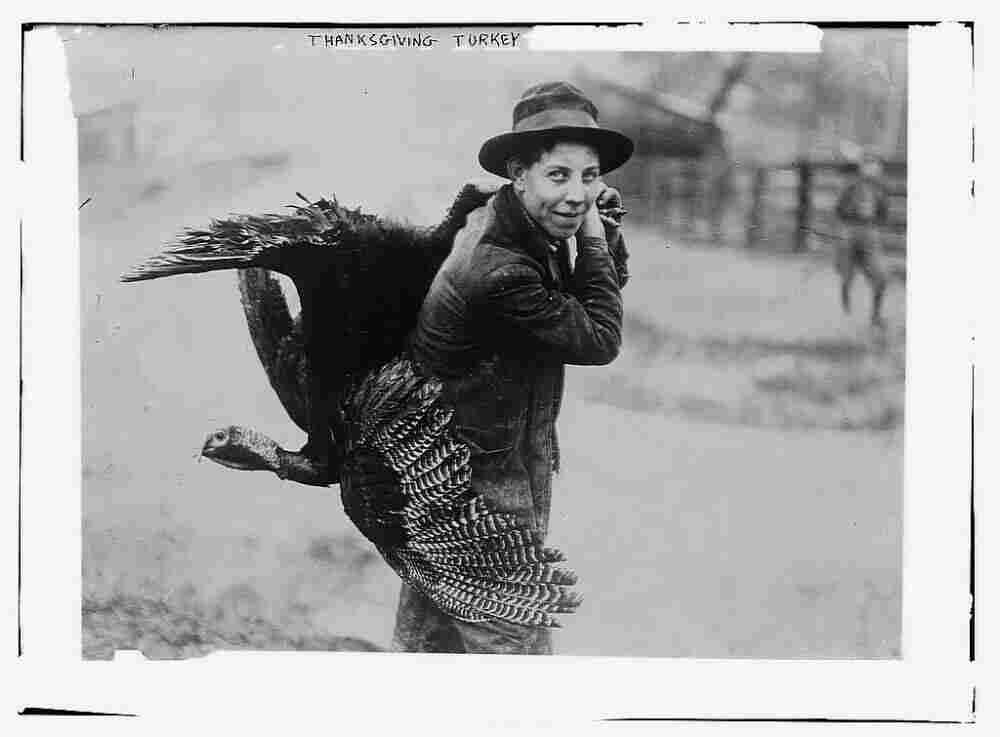 Thanksgiving turkey, circa 1910