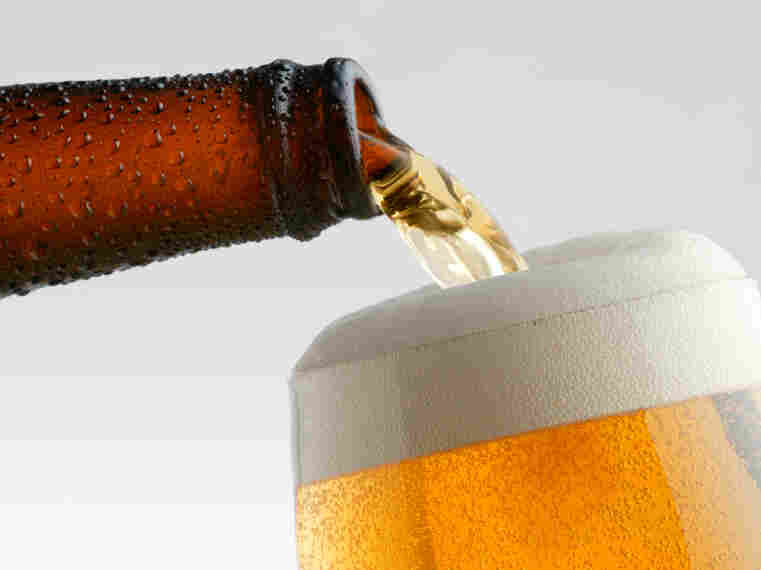 Flies are attracted to glycerol, a chemical in beer produced during fermentation. Understanding more about the genes responsible for taste and smell in flies could help make powerful insect repellents.