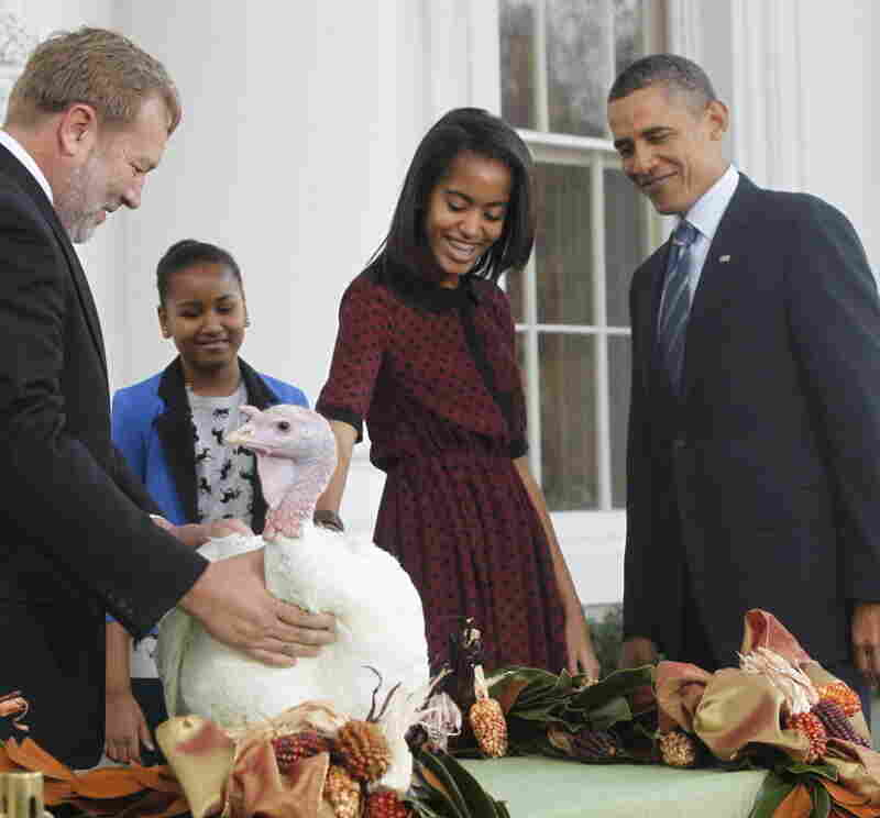 "President Barack Obama, with daughters Sasha and Malia, and one of the turkeys ""pardoned"" today — Liberty. At left is National Turkey Federation Chairman Richard Huisinga."