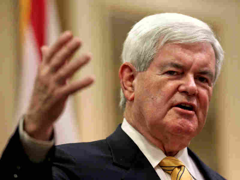 Republican presidential candidate Newt Gingrich speaks to the crowd at the Naples Hilton on Friday in Naples, Fla.