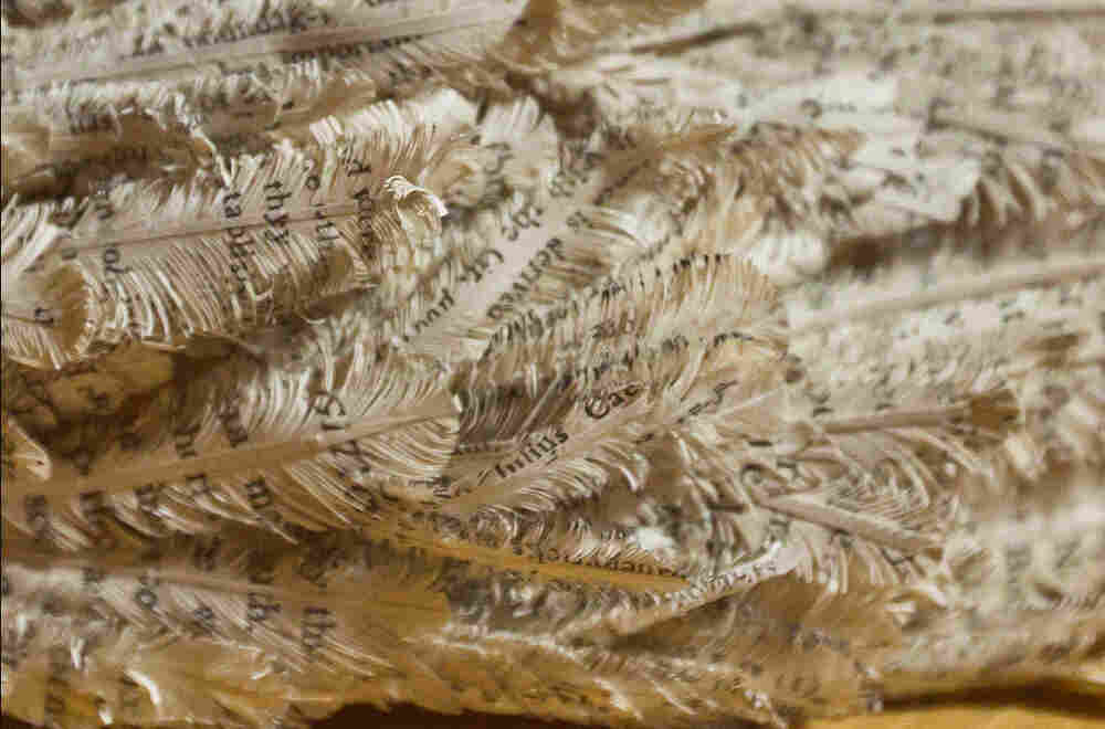 Feathers created out of book paper
