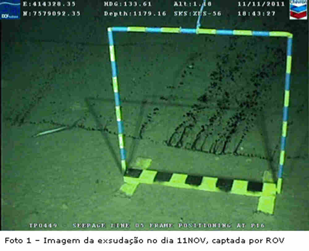 A picture released by Brazil's National Petroleum Agency shows the oil leak on the ocean floor.
