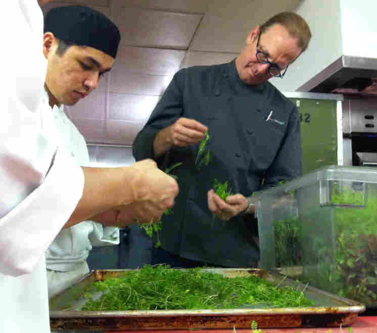 Michel Nischan and assistants prepare herbs for his cho