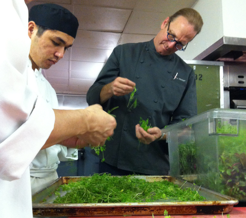 Michel Nischan and assistants prepare herbs for his chopped herb salad.
