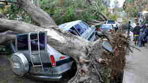 'Freakishly Powerful Winds' To Ease In Southern California, Utah