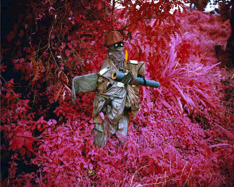 Better Than The Real Thing, 2011A scarecrow planted by the army north of Goma, a major city in Congo's far east