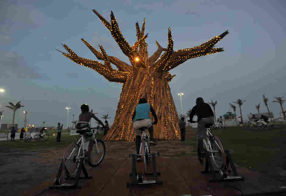 South Africans light up a Baobab tr
