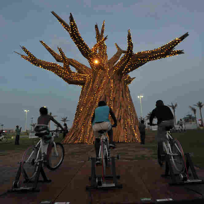 South Africans light up a Baobab tree by riding bikes in Durban as part of a renewable energies display on the beach front during the United Nations Climate Change Conference.