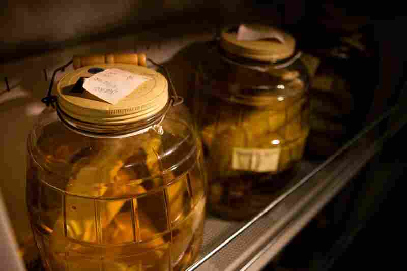 The worms were initially preserved onboard the boat in vodka — it was the only preservative the scientists had, Crane says, because they weren't expecting to find life on the seafloor. Today, specimens of the worms are kept in jars of formaldehyde at the Smithsonian Institution near Washington, D.C.