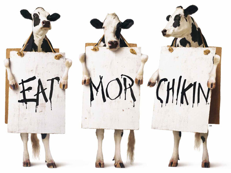 Image result for eat more chicken chick fil a