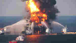 BP Accuses Halliburton Of Destroying Gulf Spill Evidence