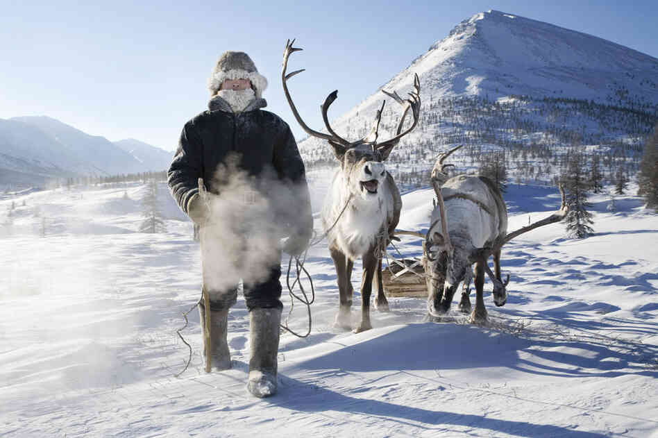 Evgenia Arbugaeva's uncaptioned photos show nomadic tribes of reindeer herders in her homeland of eastern Siberia.