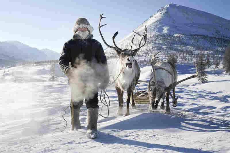 Evgenia Arbugaeva's uncaptioned photos show nomadic tribes of reindeer herders in her homeland of eastern Siberia.