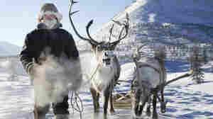 Evgenia Arbugaeva documents reindeer herders in eastern Siberia.