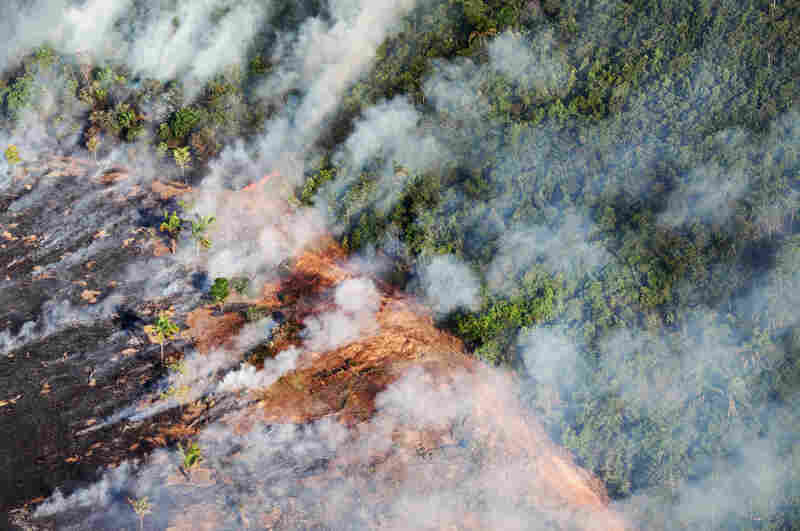 Deforestation and forest fires are responsible for 75 percent of the carbon dioxide emissions in Brazil. Above, smoke from a fire on livestock pastures in Brazil's Mato Grosso state breaks into the forest, September 2009.