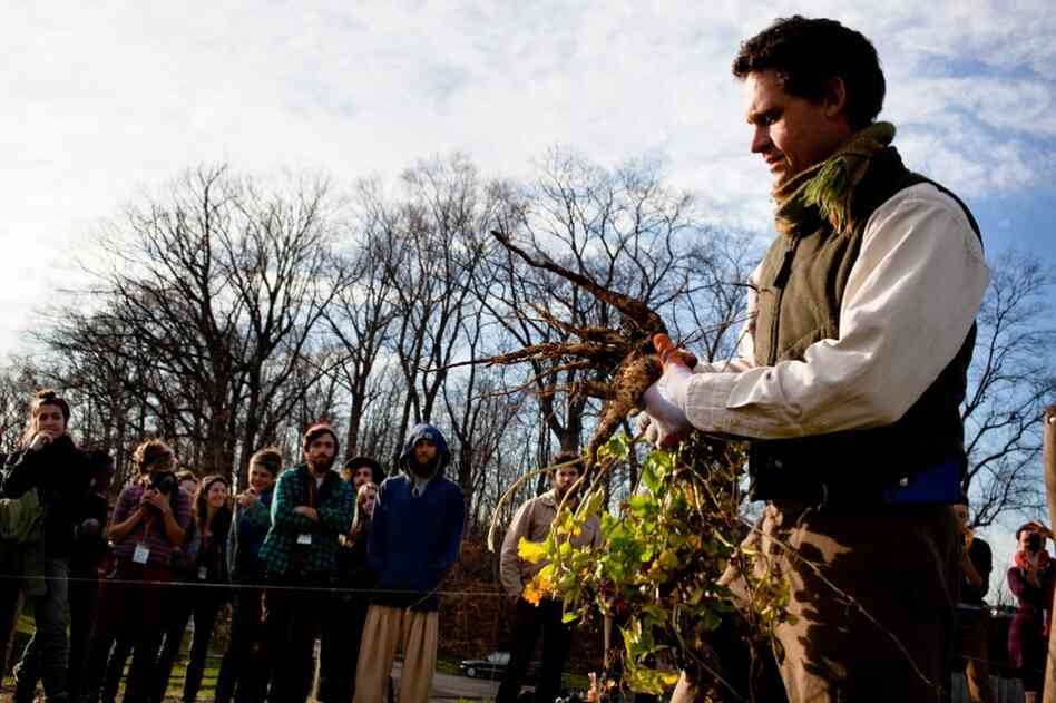 Jack Algiere demonstrates how to harvest parsnips.  He's the farm manager at Stone Barns Center for Food and Agriculture, which hosted the conference.