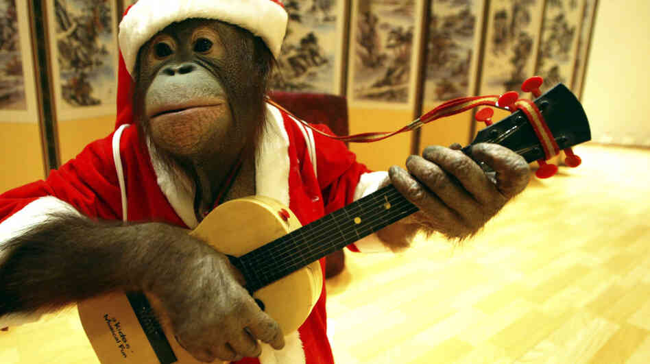 Every song on this mix is performed by monkeys. Every. Last. One.