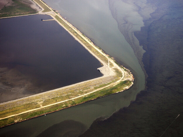 Algae blooms in the mouth of the Elizabeth River in Norfolk, Va., on July 31, 2010. Rain, high temperatures, and pollution from agricultural runoff made for ideal algae bloom conditions.