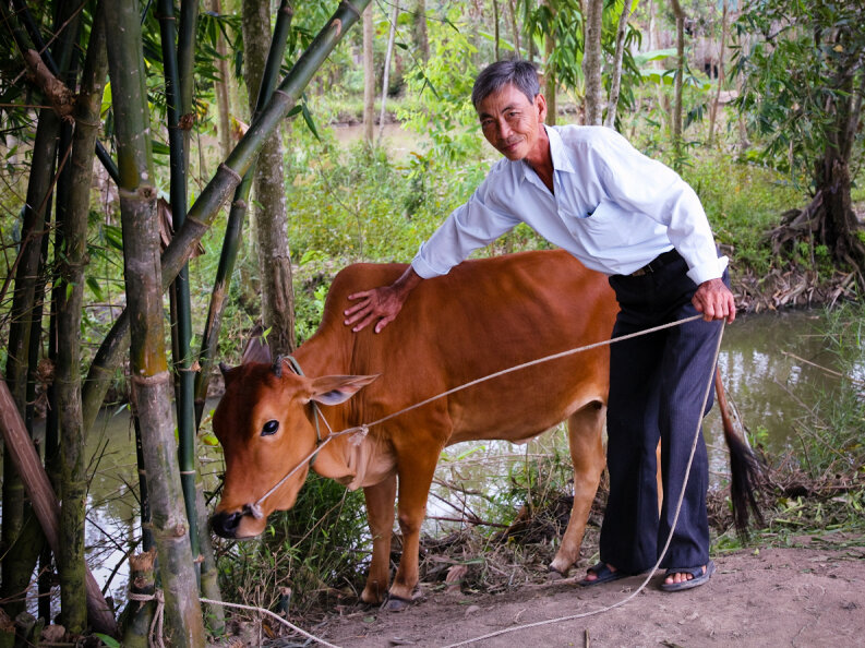 Image result for poor man with a cow