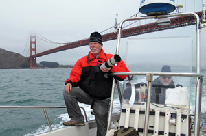 Bill Keener (left) and Jonathan Stern search for porpoises under the Golden Gate Bridge. Water quality has dramatically improved since the 1970s, which may be bringing the porpoises back.