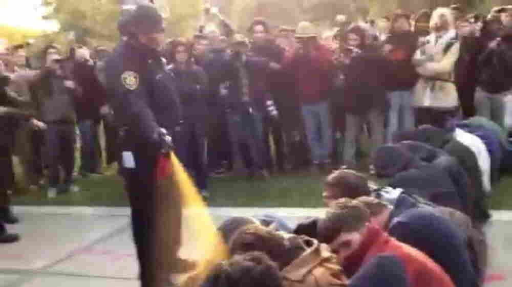 In this image made from video, a police officer uses pepper spray as he walks down a line of Occupy demonstrators sitting on the ground at the University of California, Davis, on Nov. 18.