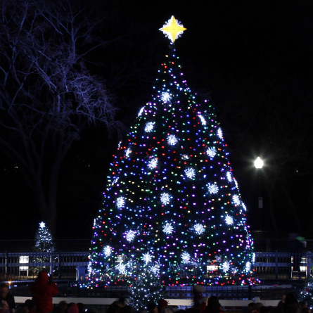 The 2011 national Christmas tree is a 26-foot Colorado blue spruce. It was planted just this year after a windstorm blew down the last tree.