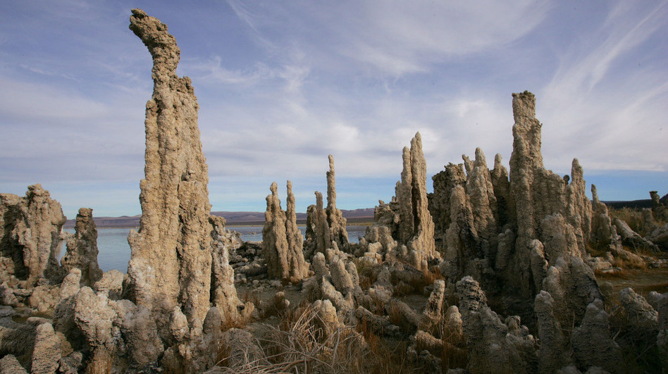 Researchers claimed in late 2010 that they found bacteria in Mono Lake, Calif., that survived on the poison arsenic in the place of an element thought essential to life. The report was immediately greeted with skepticism from the scientific community.