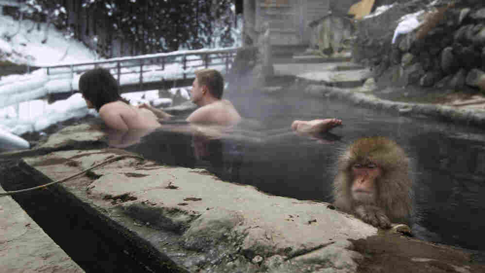A couple from the Czech Republic bathe with a macaque in Nagano, central Japan, in January.