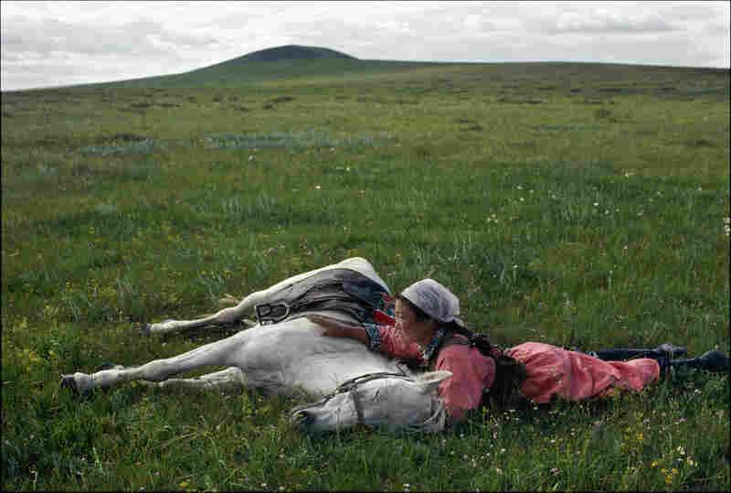 Horse training for the militia in Mongolia, 1979.
