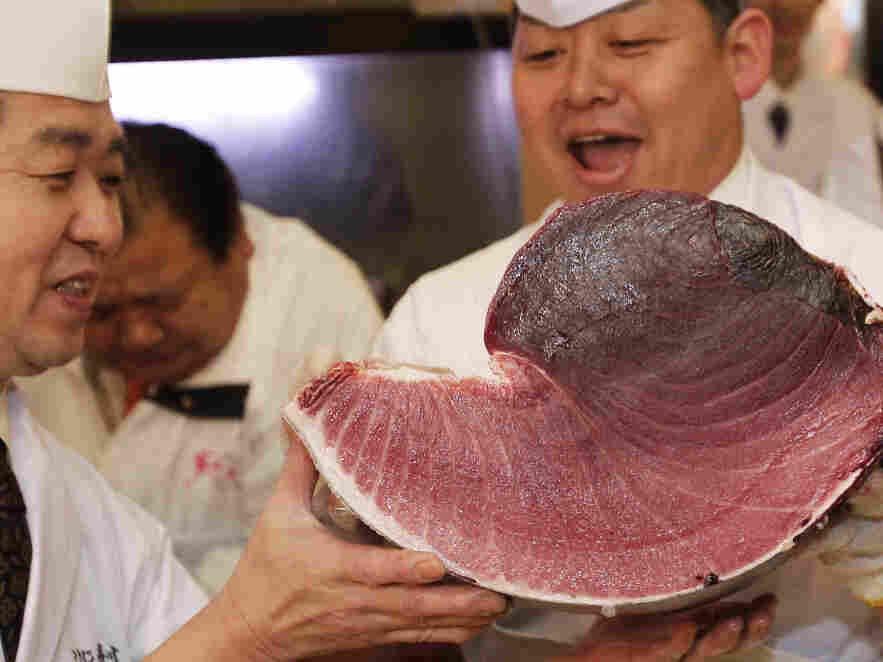 Sushi chefs of Kiyomura Co. hold a slice of a bluefin tuna near the Tsukiji fish market in Tokyo. The bluefin tuna caught off northeastern Japan fetched about $736,000 Thursday in the first auction of the year at the fish market.