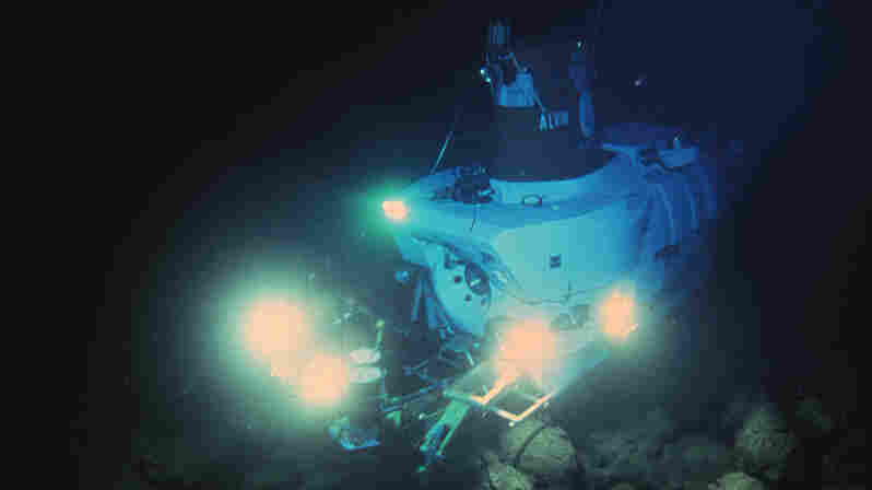 The Deep-Sea Find That Changed Biology