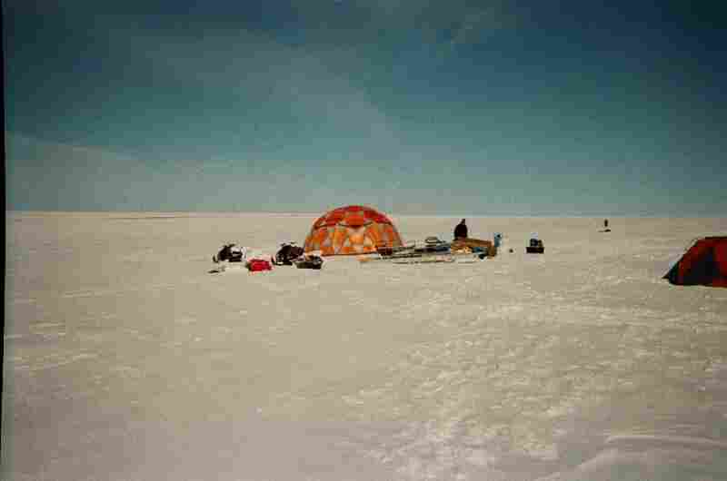 Camera 162: Sally R's cameras traveled out to the ice sheets of Greenland.