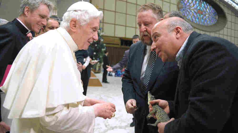 Pope Benedict XVI will travel in March to Cuba, where he's expected to endorse the growing dialogue between the church and the state. Here, an employee from the Rome's Biopark zoo holds a rare Cuban crocodile Wednesday, as he meets the pontiff at the Vatican. The crocodile will be returned to Cuba around the time the pope visits the island.