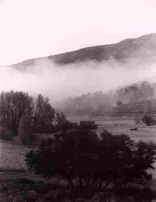 Fog, Gypsum, Colo., 2006