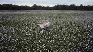 Sally and David Howard, from the series In Cotton